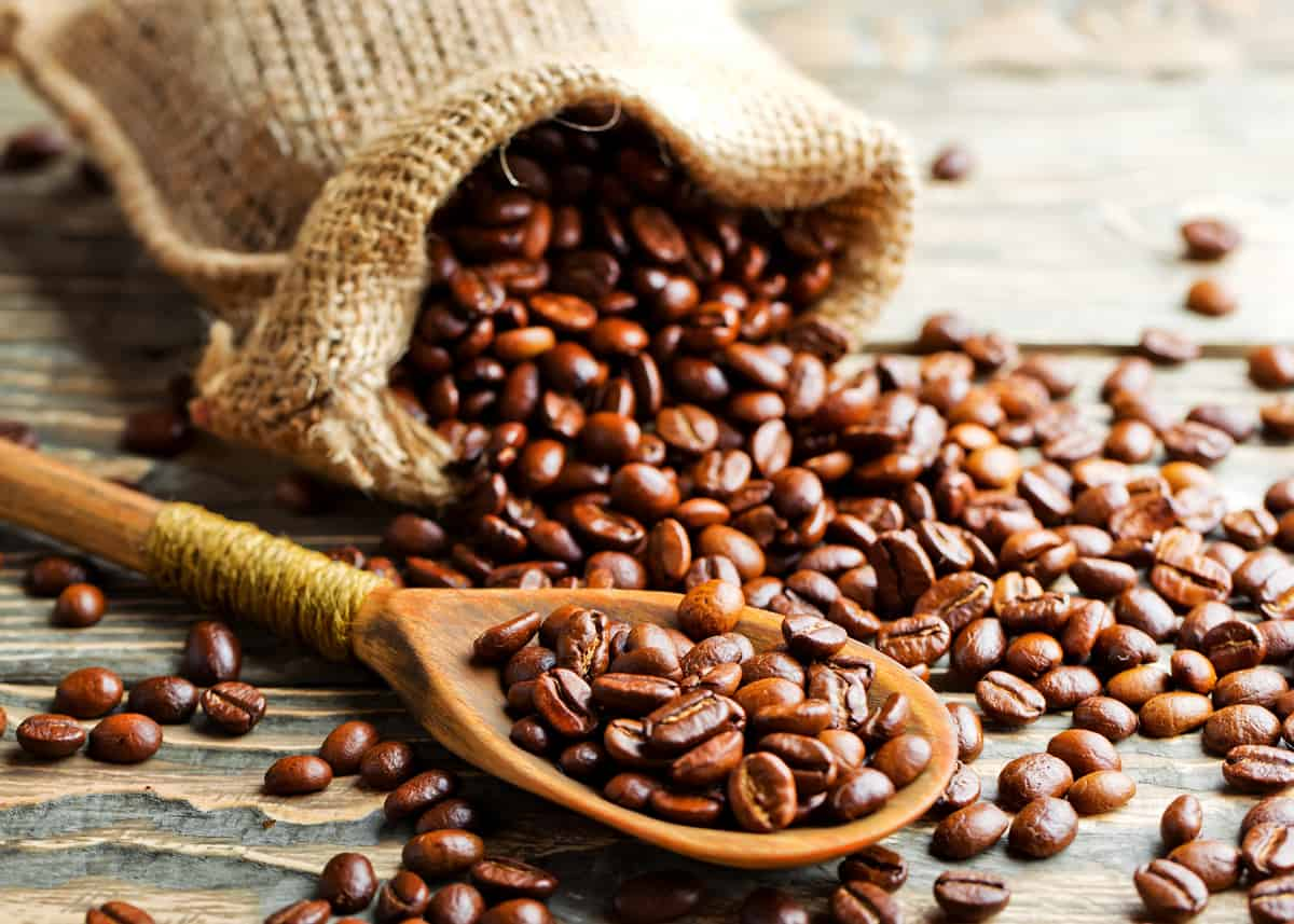 How Beans Become Coffee - DemotiX