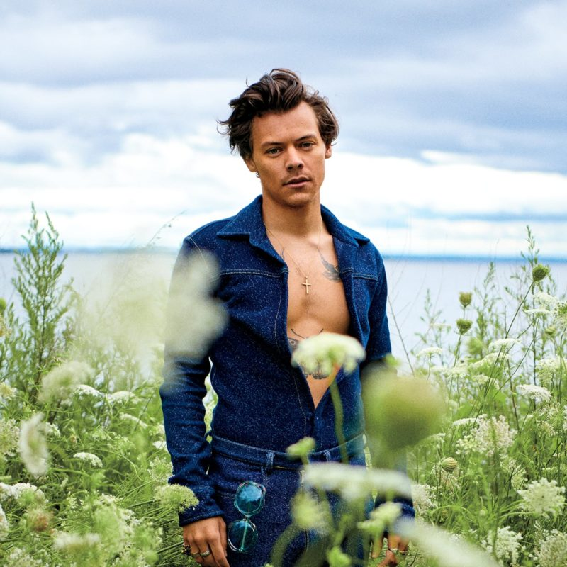Harry Styles Opens Up About His Orientation Quot Who Cares If